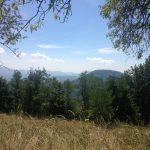 Terrain – Revest les Roches